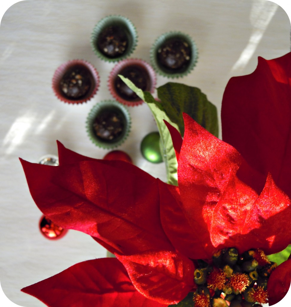 holiday bliss bites 1